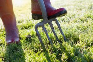 aeration-fine-cut-lawn-service