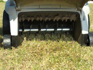 dethatching-lawn-fine-cut-lawn-service