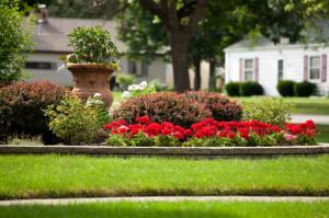 landscaping-fine-cut-lawn-service