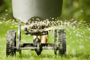 lawn-fertilization-fine-cut-lawn-service