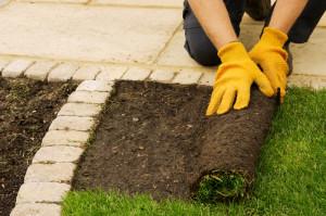laying-sod-fine-cut-lawn-service